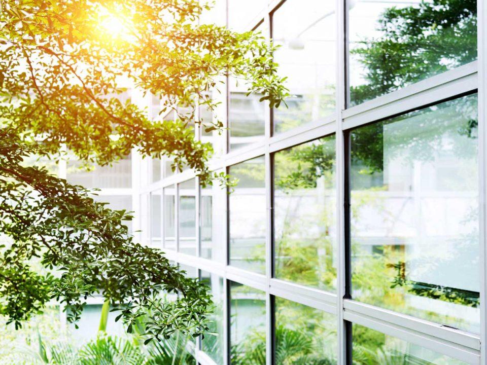 Umweltfreundliche Fassadenreinigung